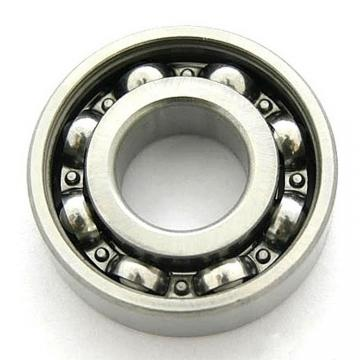 SKF 6007 2ZNRJEM Single Row Ball Bearings